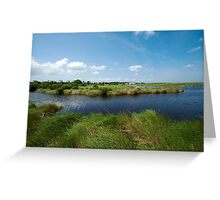 Louisiana's delicate wetlands Greeting Card