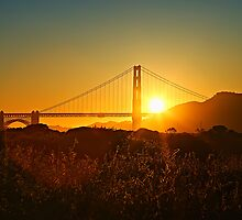 Golden Gate Sunrays by Leasha Hooker