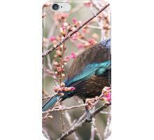 Tui and the beautiful colours of nature........! iPhone Case/Skin