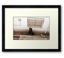 the master... Framed Print