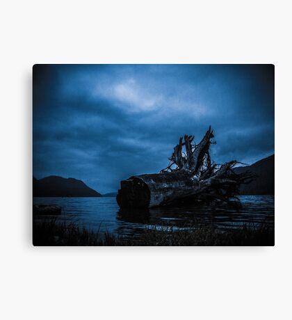Night Fell Canvas Print