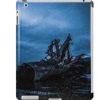 Night Fell iPad Case/Skin