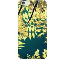 Sunday Sun iPhone Case/Skin
