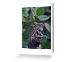 The Reptile profile Greeting Card
