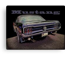 Macho Mustang Canvas Print