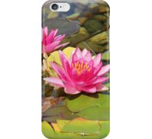 Lovely Garden Pond iPhone Case/Skin