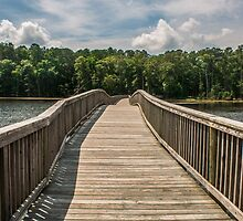 Wooden Bridge to Forest by Sherry V. Smith Fine Art Photography