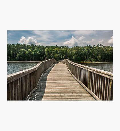 Wooden Bridge to Forest Photographic Print