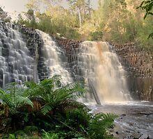 Dip Falls in Tasmania by David Bosworth
