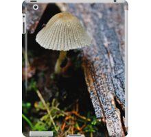 Furry Cap iPad Case/Skin