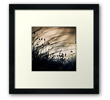 wild things - number 2 Framed Print