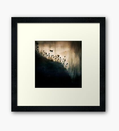 wild things - number 1 Framed Print