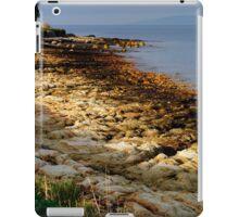 Craggy Coastline iPad Case/Skin