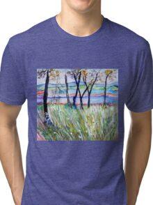 Delicious Tri-blend T-Shirt