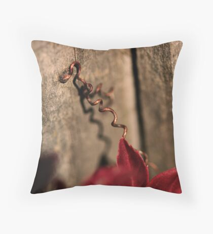 Curly Wurly Throw Pillow