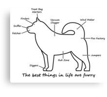 Furry anatomy Canvas Print