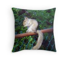 No one's looking Throw Pillow