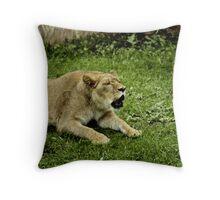 Kaya Throw Pillow