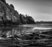 Cape Disappointment Washington by Jeffrey  Sinnock