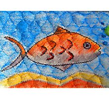 Orange fish Photographic Print