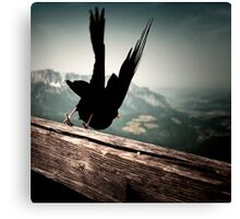 At Eagle's nest Canvas Print