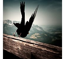 At Eagle's nest Photographic Print