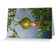 pomegranate fruit and menacing sky Greeting Card