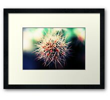 A sharpened blur Framed Print