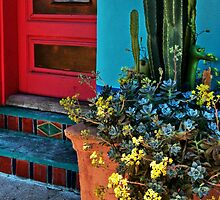Tucson Doors and Windows II by Linda Gregory