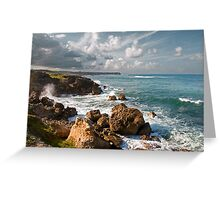 A View of Ragged Point from Deebles Point Greeting Card