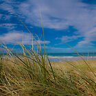 Peregian Beach 3 by Jaxybelle