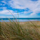 Peregian Beach 4 by Jaxybelle