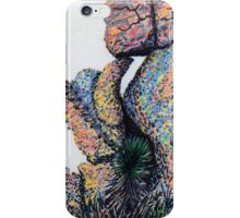 Cliff Boulders at Cochise Stronghold iPhone Case/Skin