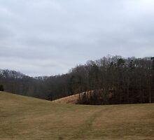 Perfect Landscape by trisha22