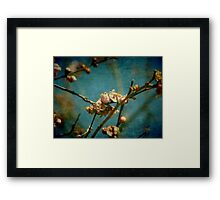 Over before it began Framed Print