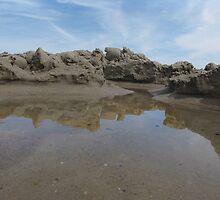 beach VII by Olsen