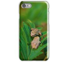 Fabulous Froggies iPhone Case/Skin