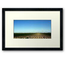 Fruited Plains Framed Print