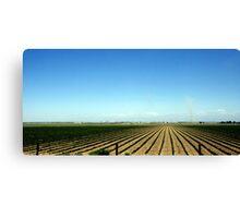 Fruited Plains Canvas Print