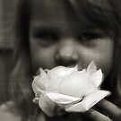 The Fake Silk Rose #1 by SquarePeg