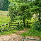 Path to the Back Field by Rebecca Bryson