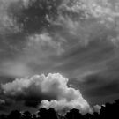 Clouds© by walela