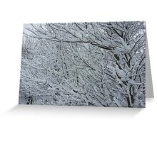 More Snowy Trees Greeting Card
