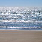 Sand and Ocean at Newport, Oregon  by Tamara Lindsey