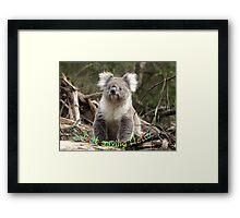 Koala saying Hello Framed Print