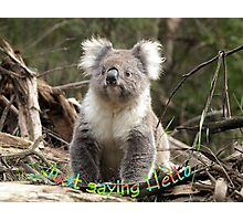 Koala saying Hello Photographic Print
