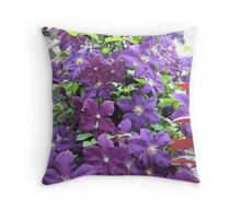 Jack and the Clematis Bean Stalk Throw Pillow