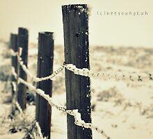 Winter by Bianca Velasco