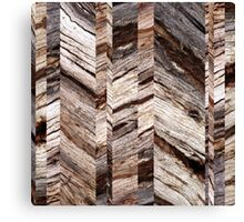 Parquetry Canvas Print