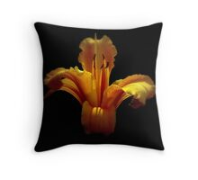 """ Mary Gold "" Throw Pillow"